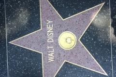 Star on Hollywood Boulevard Walk of Fame